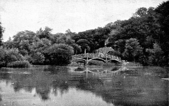 Nuneham Bridge in 1900